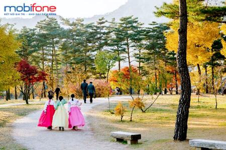 Hướng dẫn đăng ký gói cước CVQT MobiFone tại Hàn Quốc